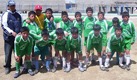 SUB CAMPEONES PROVINCIALES 2008