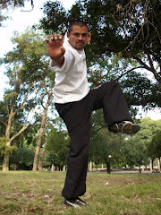 Shifu Daniel Bogado