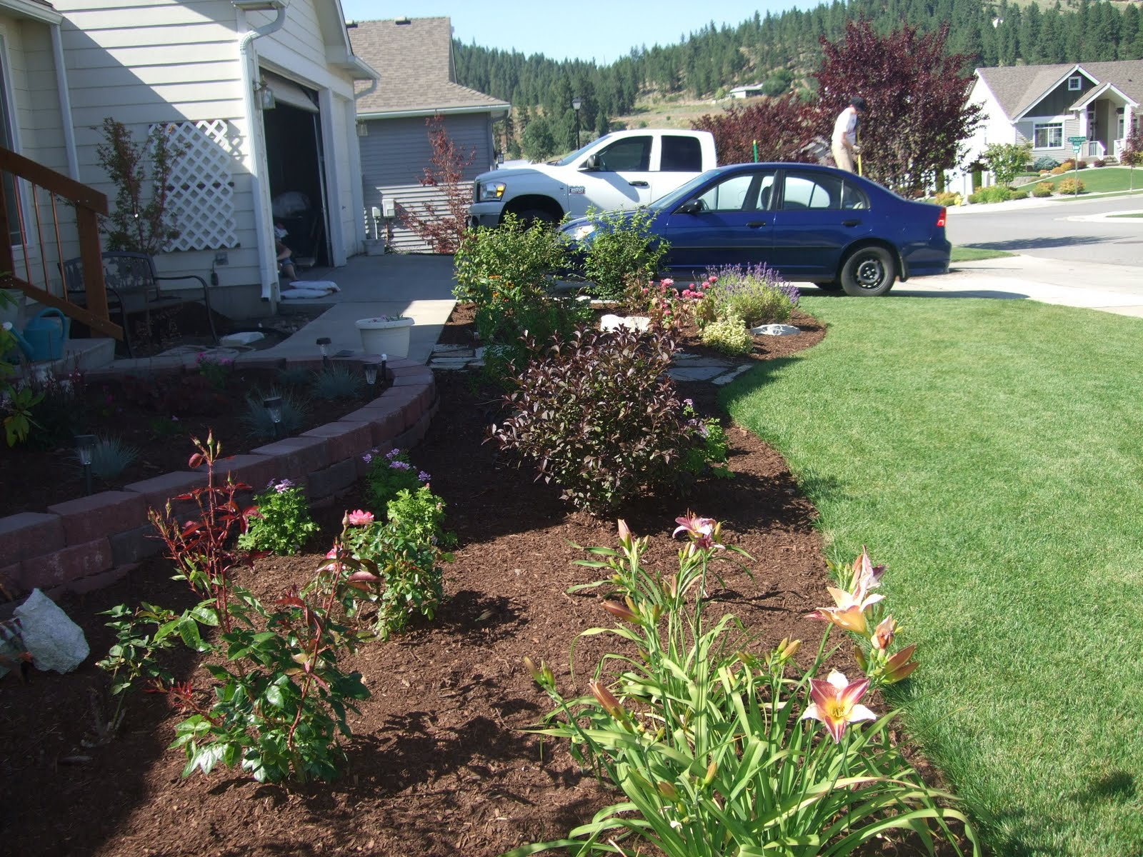The folks at home front yard landscaping for New home front yard landscaping
