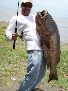 Big Cubera Snapper