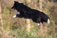Katja Jump
