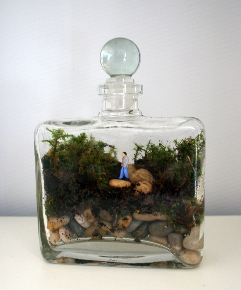Adventures In Life Living Jewelry And Terrariums