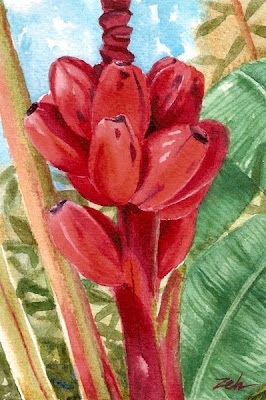Red bananas watercolor painting by Janet Zeh