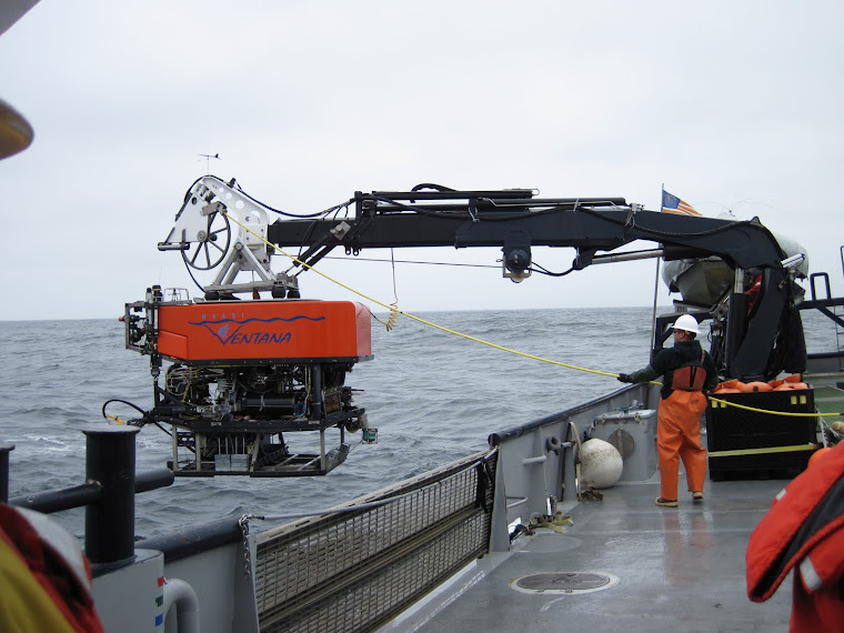 sending the ROV down