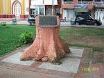 tronco monumento