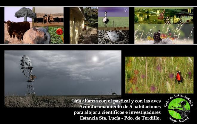 Proyecto Santa Lucía