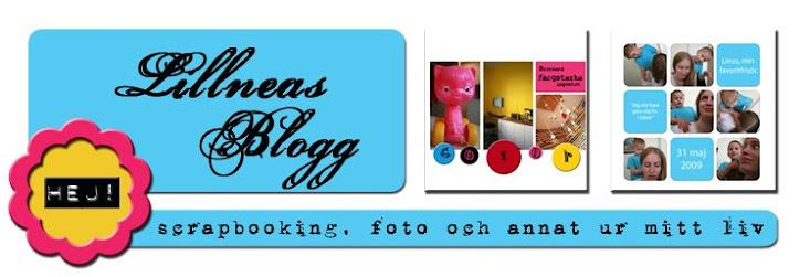 Lillneas Blogg