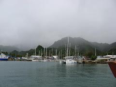 Raratonga Harbour