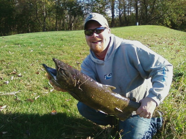 Illinois wisconsin fishing fly fishing salmon on the pike for Fly fishing wisconsin