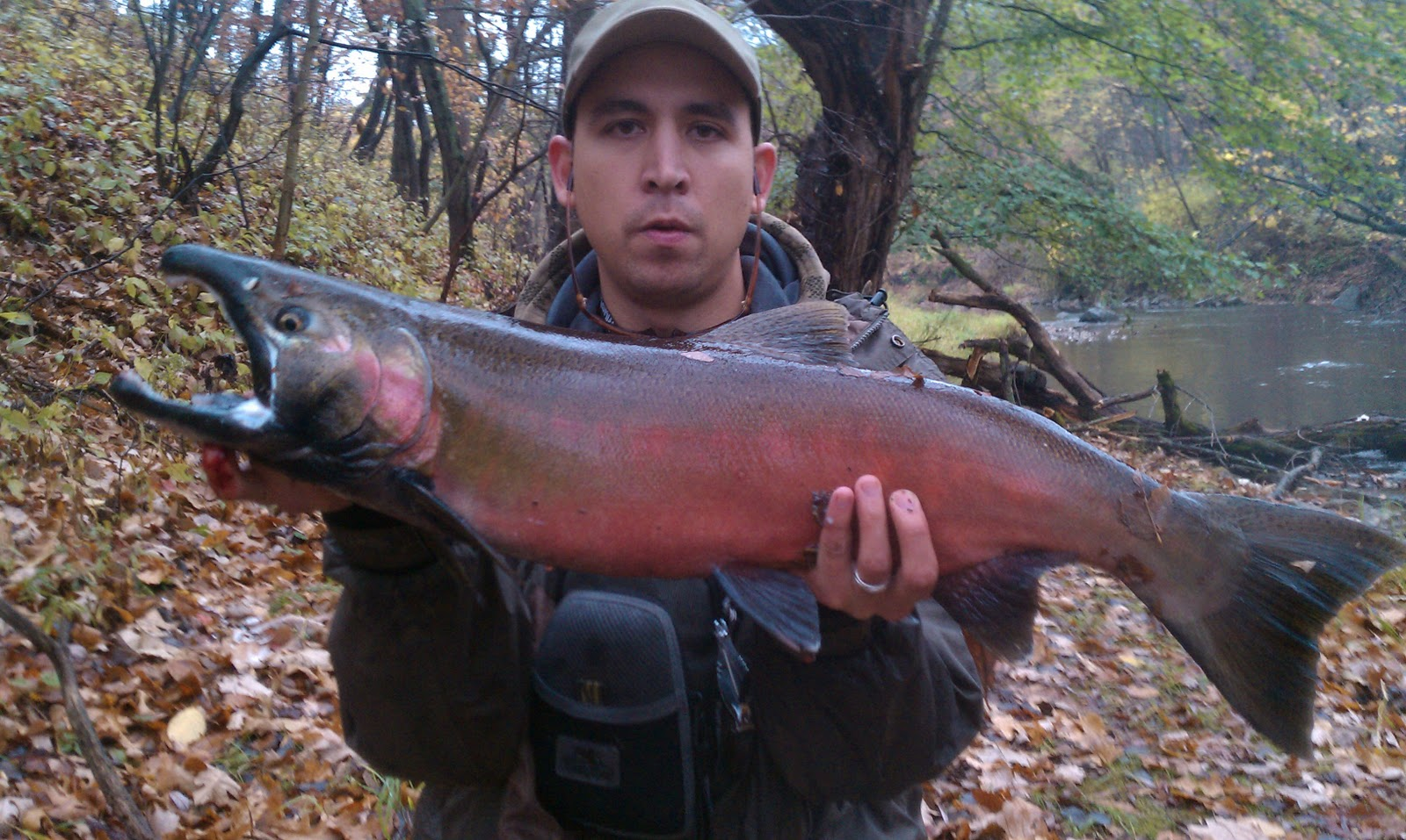 Illinois wisconsin fishing fly fishing salmon southeast wi for Salmon fishing wisconsin