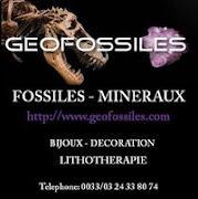 GEOFOSSILES.