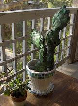 Heinekin Cactus