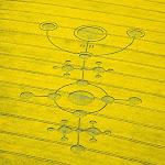 gambar crop circle, foto crop circle, alien, ufo, lingkaran tanaman, www.digaleri.com