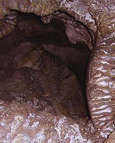 turismo exótico en argentina: caverna de las brujas