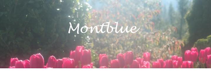 Montblue Design