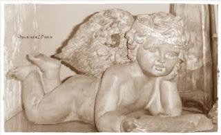 angel reading book