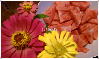 Zinnia and Watermelon