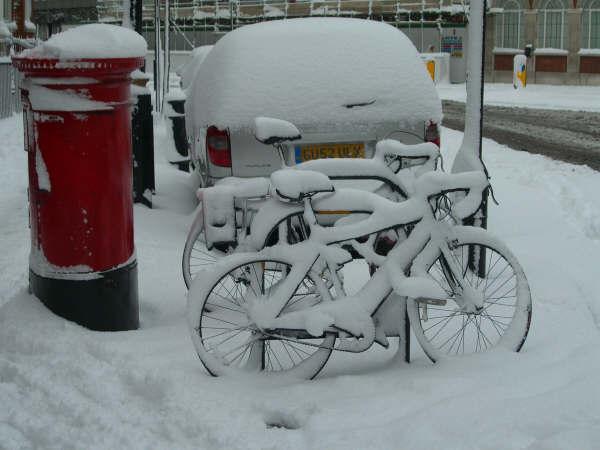 [snow+pic]