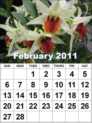 Download Free Printable Calendar 2011: January to December 2011 New Year