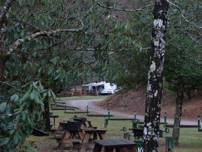 the lone camper