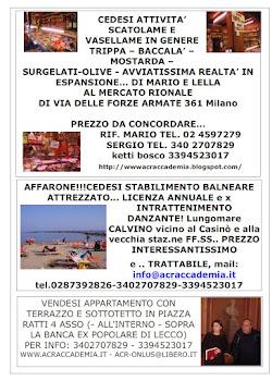 IL MILANESE/IL BAGGESE..PUBBLICITA' di CASE e Box in VENDITA!