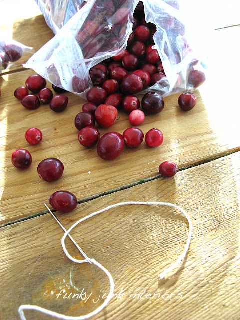 cranberry garland for Christmas