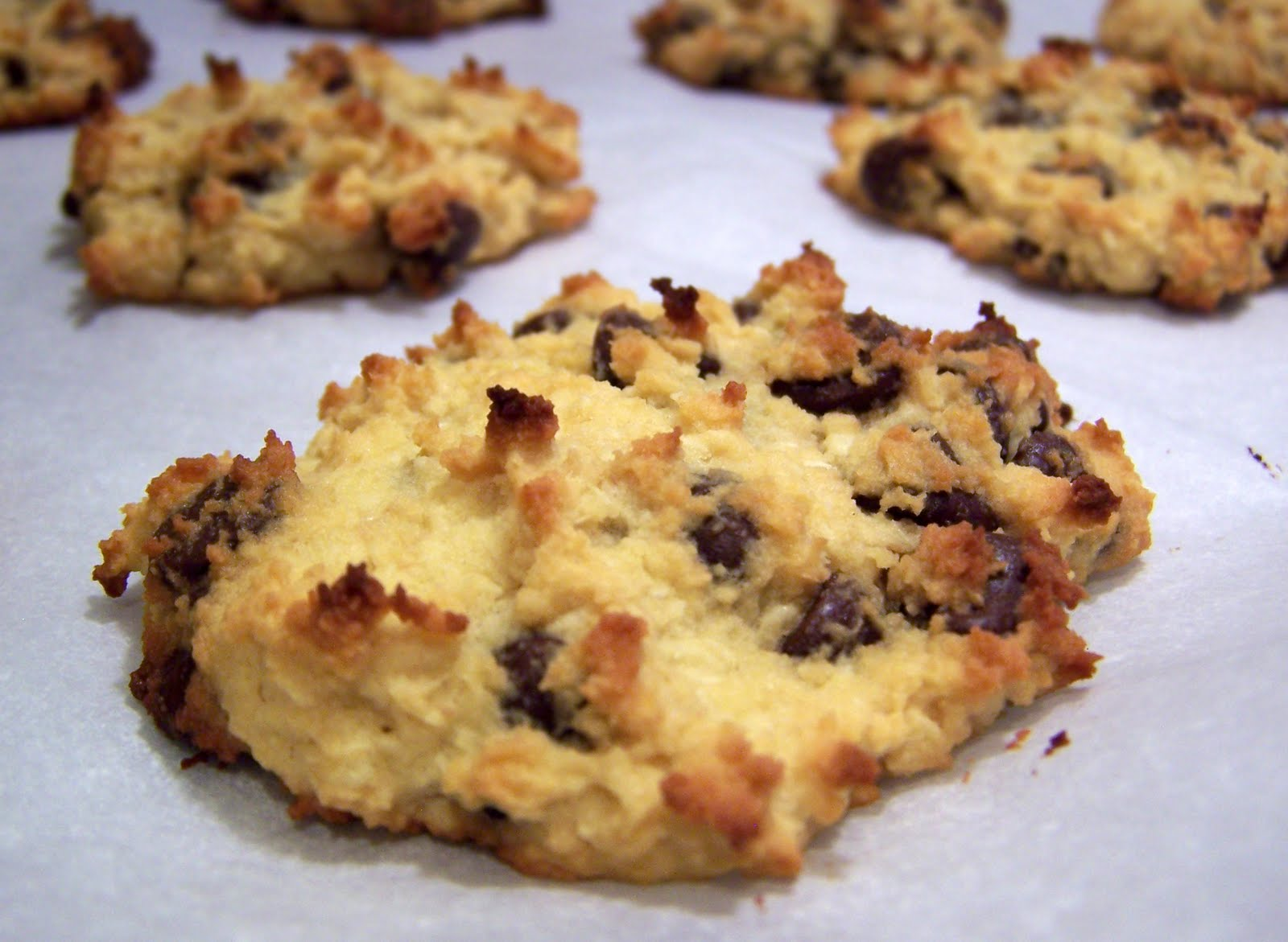 Cookie Monster Goes Primal…Coconut Chocolate Chip Cookies - Primal ...