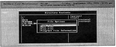 FILER - File Options