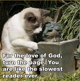 For The Love Of God, Turn The Page. You Are Like The Slowest Reader Ever