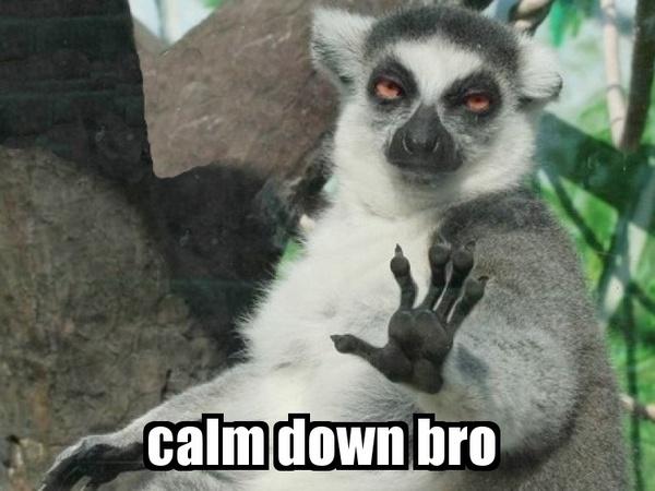 calm%2Bdown%2Bbro.jpg
