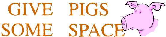 Give pigs some space
