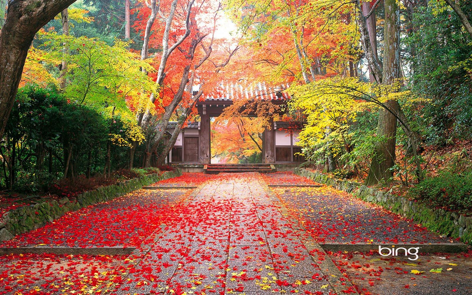 http://1.bp.blogspot.com/_QEU_usU4qX4/TIAH-CseobI/AAAAAAAAACk/MS2ED9-IA7E/s1600/1komyo-ji.jpg