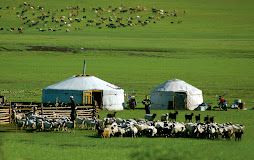 Mongolian travel photos