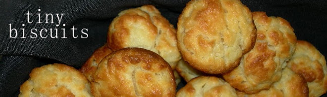 tiny biscuits recipes