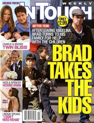 brad pitt and angelina jolie divorce brad gets the kids