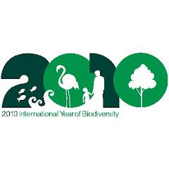logotipo2010