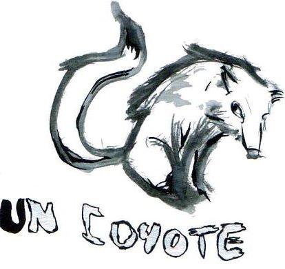 [coyote-evan-collab]