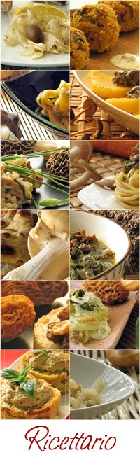 Indice delle ricette con funghi - Mushrooms recipes