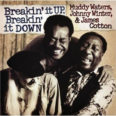 Muddy Waters: Breakin' It Up, Breakin' It Down (1977)