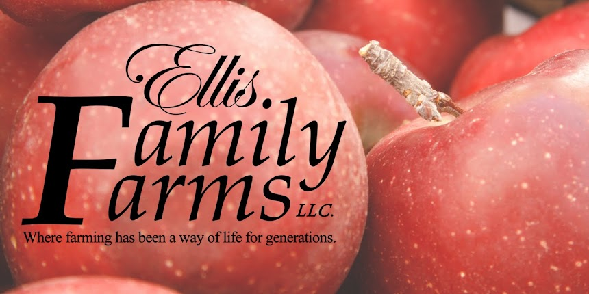 Ellis Family Farms