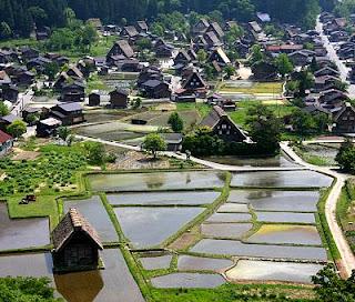 ogimachi village shirakawago