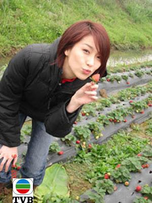 Elaine yao