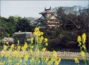 Toyohashi Yoshida Castle