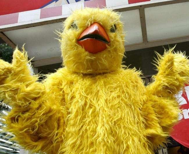 Teatro                           Hombre-pollo