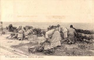 Mossamedes: quimbares preparando o peixe