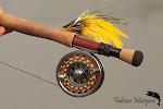 La web de la Pesca de Dorados con Mosca --- O site da Golden Fly Fishing
