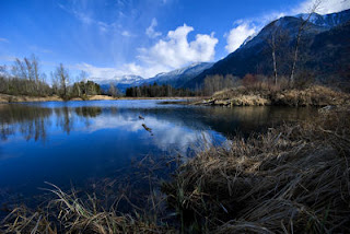 Cheam Lake Wetlands Regional Park, BC, Canada