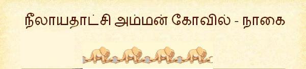 நீலாயதாட்சி அம்மன்  கோவில் - நாகை (நாகப்பட்டினம்)