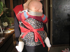 Portare i bimbi