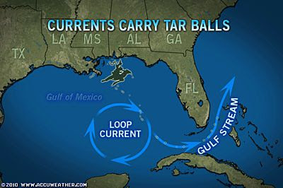 Gulf Stream Fishing Miami Current